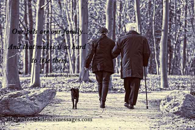 Sympathy Quote for a Loss of a Pet 1