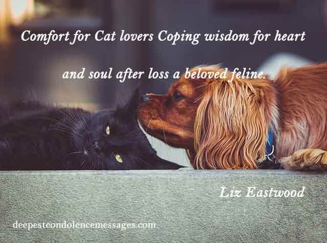 Sympathy Quote for a Loss of a cat